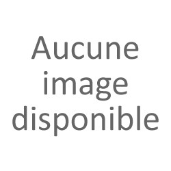 Jean Philippe RAGOT - ARTISAN CHOCOLATIER